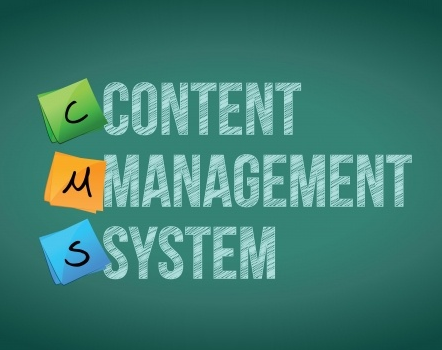 CMS Trends Which You Need ToKnow